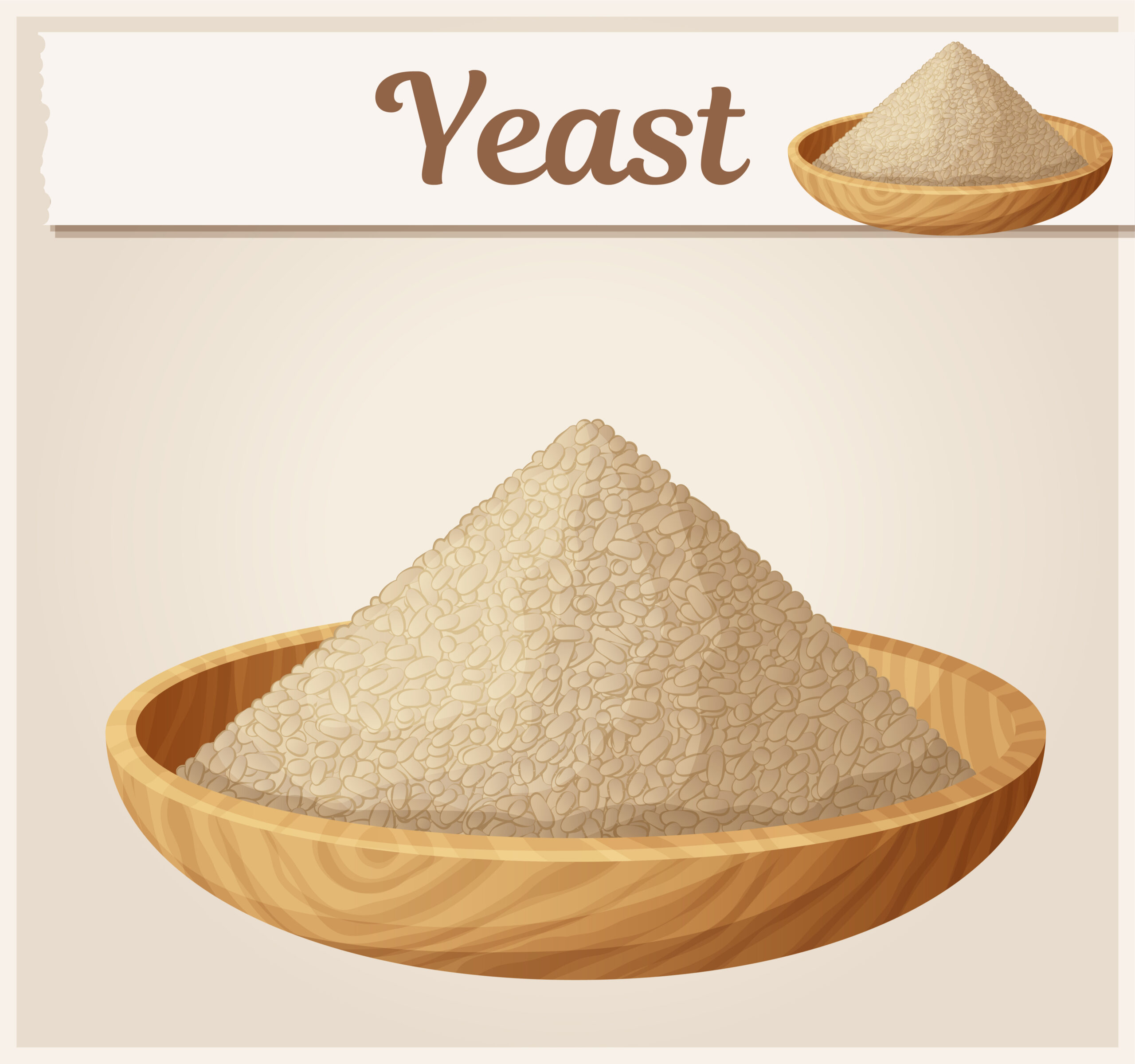 Types of Yeast for Baking, Which is Best?
